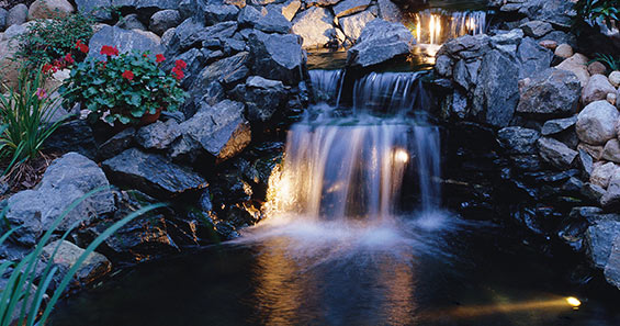 Pond Lighting Options Your Water Garden Guide